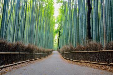 Poster Kyoto 京都 嵐山の竹林の道