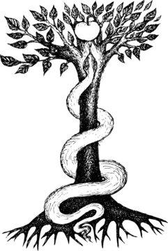 snake on an apple tree