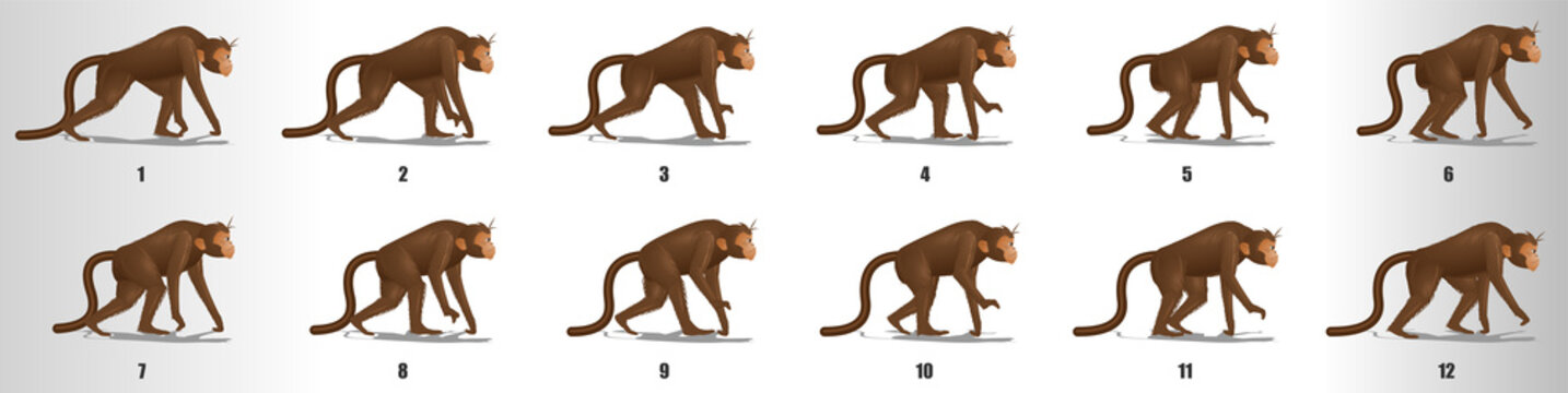 Monkey walk cycle animation frames, loop animation sequence sprite sheet