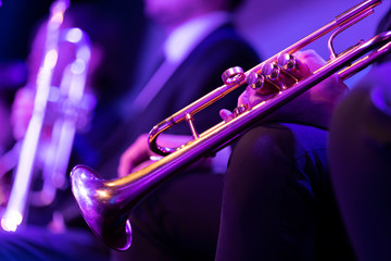 A trumpet player dressed in concert black sitting and holding a gold plated trumpet