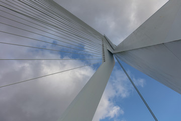 Canvas Prints Bridge Erasmusbrug bridge in Rotterdam Netherland