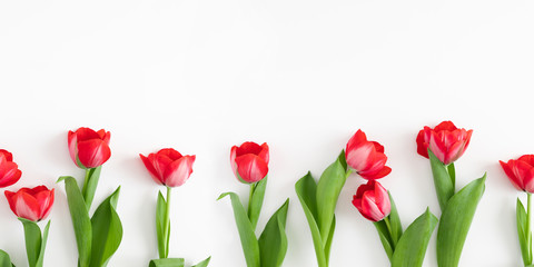 Flowers composition romantic. Red tulips on white background. Wedding. Birthday. Happy womens day....
