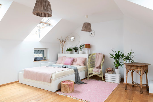 Interior of white bedroom in the attic with double bed and pink decoration. Cozy room in apartment with wooden floor, carpet, armchair and table. Bright indoors with window.