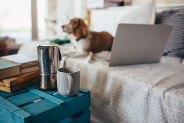 Printed roller blinds Tea close up of coffee and books, dog and laptop in blurred background in room