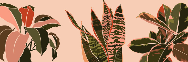 Art collage houseplant leaves in a minimal trendy style. Silhouette of sansevieria, Spathiphyllum and ficus plants in a contemporary simple abstract style on a pink background. Vector illustration Fototapete