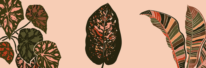 Art collage plant leaves in a minimal trendy style. Silhouette of Dieffenbachia, begonia and banana plants in a contemporary simple abstract style on a pink background. Vector illustration freehand - fototapety na wymiar