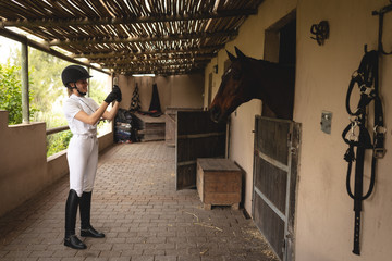 Caucasian woman making a picture of her while dressage horse in stable