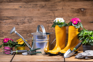 Printed kitchen splashbacks Garden Gardening Tools And Flowers