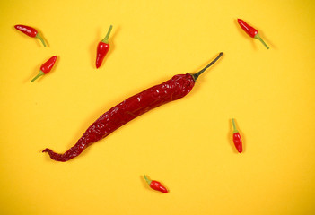 Canvas Prints Hot chili peppers red hot pepper lies on a bright background