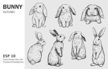 Sketch of bunny. Hand drawn outline converted to vector