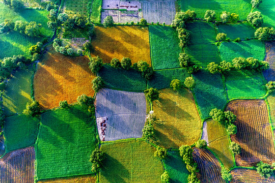 aerial view of rice fields in Mekong Delta, Tri Ton town, An Giang province, Vietnam. Ta Pa rice field.