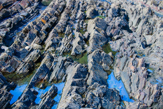 Picturesque surface of turbidites on the northern coast of Spain near the village of Armintza. Basque Country. Northern spain