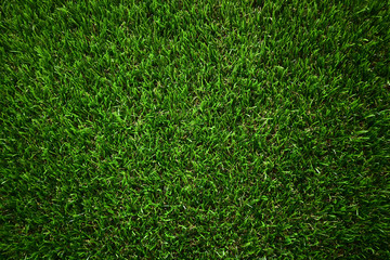 Foto auf Leinwand Gras green grass turf floor artificial background