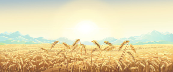 Keuken foto achterwand Beige Rural landscape with wheat field with mountains and sunrise on background. Raster illustration.