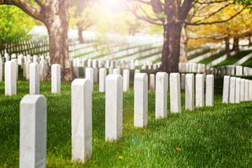 Fototapete - View or rows of white tombstones on the cemetery lit with warm sunlight sun