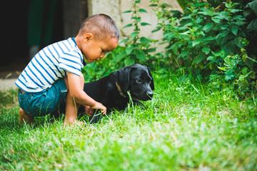 Enfant jouant avec un chiot