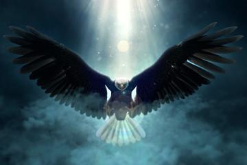 Bald eagle flying over the clouds 3d illustration Fototapete