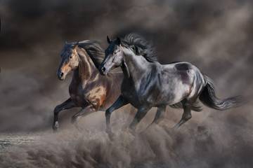 Foto op Canvas Paarden Two horse run gallop in desert storm