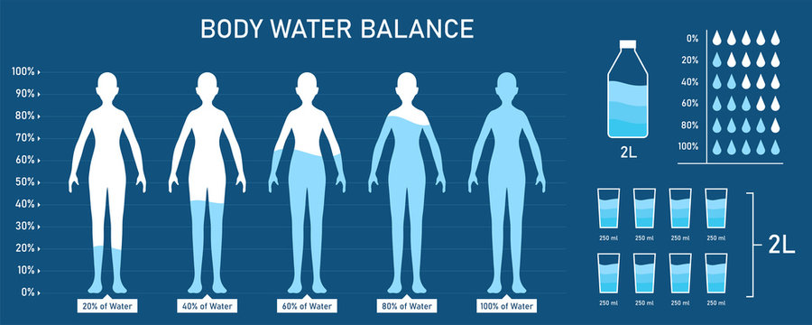 Creative vector illustration of Water balance infographic, human body background. Art design difference percentage level balance template. Concept of human healthy lifestyle daily water consumption.