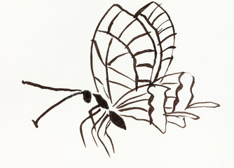 butterfly hand-drawn in sumi-e style