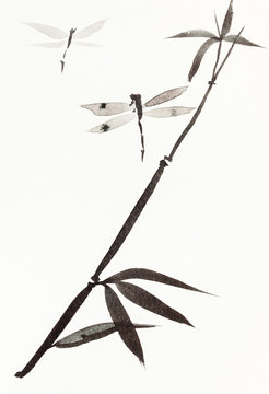 dragonflies and reed hand-drawn in sumi-e style