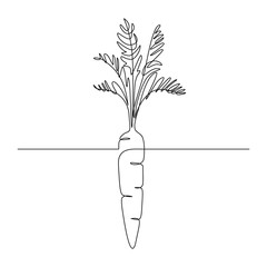 Carrot vegetable in continuous line art drawing style. Growing carrot plant minimalist black linear sketch isolated on white background. Vector illustration