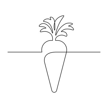Simple carrot design in continuous line art drawing style. Growing carrot plant minimalist black linear sketch isolated on white background. Vector illustration