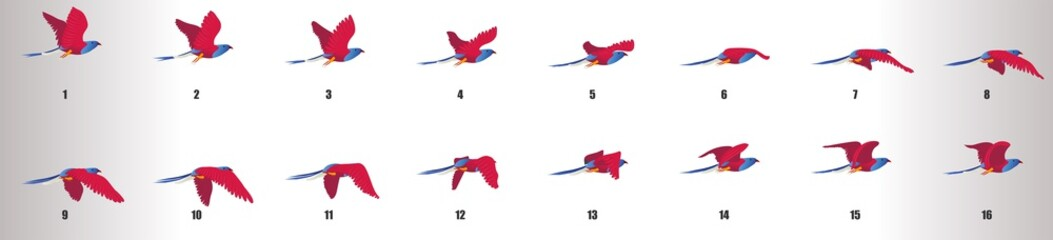 Bird flying animation sequence, loop animation sprite sheet Fototapete