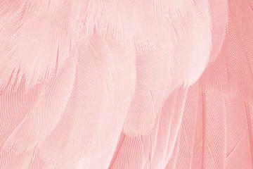 Foto op Canvas Flamingo Beautiful soft pink flamingo vintage color trends feather pattern texture background