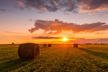 Printed kitchen splashbacks Autumn A field with haystacks on a summer or early autumn evening with a cloudy sky in the background. Procurement of animal feed in agriculture. Landscape. Sunset.