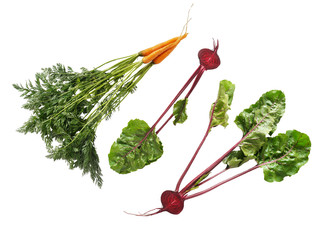 Fototapete - vegetables carrots and beets with tops isolated on a white background