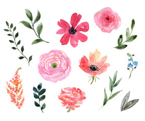 Watercolor floral set. Cute pink wild flowers, green leaf, foliage, isolated on white background. Botanical elements illustration. Pastel color palette. Great for wedding design, cards, invitations