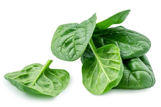 Pile of baby spinach leaves isolated on white background. Fresh green spinach.  Closeup