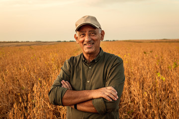 Portrait of senior farmer standing in soybean field examining crop at sunset. Wall mural