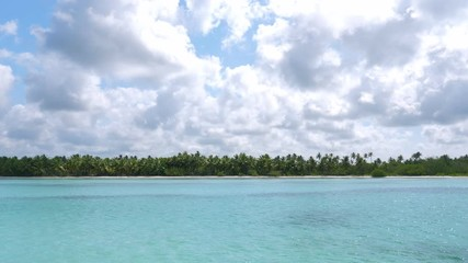 Fototapete - Coconut palm trees on caribbean island. Summer Vacations. Travel destinations. View from yacht