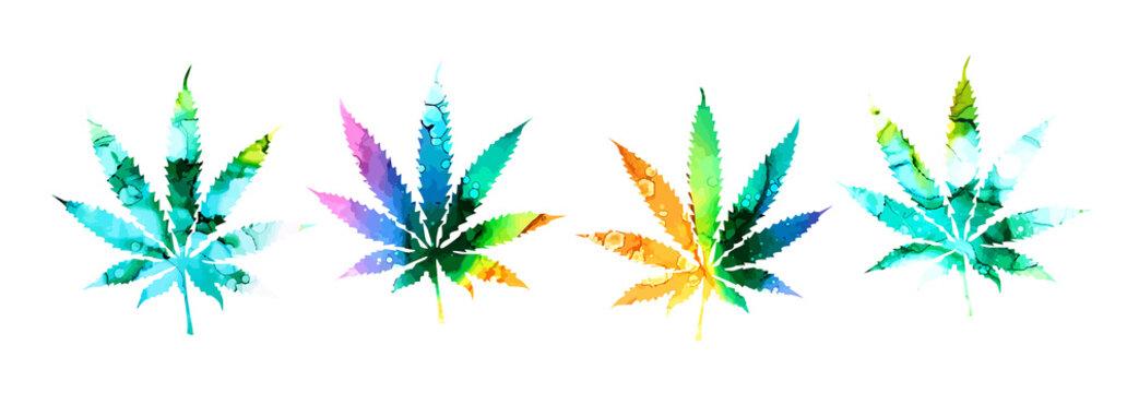 set Cannabis or marijuana leaf multi-colored icon , mixed media. Vector illustration