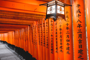 Lamp and torii gates path at Fushimi Inari taisha shrine, Kyoto