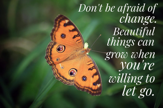 Inspirational quote - Do not be afraid of change. Beautiful things can grow when you are willing to let go. With beautiful orange butterfly on green grass background.
