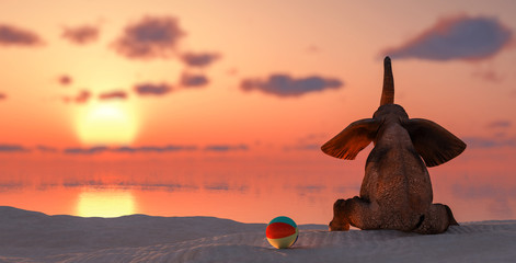 Foto op Canvas Olifant elephant sitting on the beach watching or the sunset