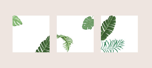 Green and Tropical cover design template, Social media stories and Main Feed Background  with green tropical leaf geometric shapes and minimal style decoration. Vector illustration. Wall mural