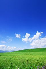 Papiers peints Bleu fonce Idyllic view, green hills and blue sky with white clouds