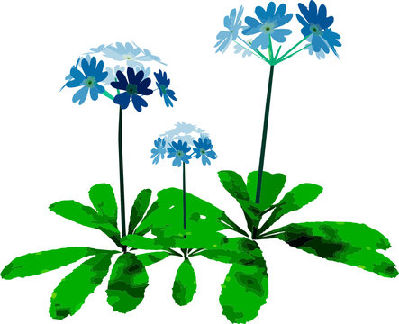 svg Decorative plant vectors ready to be used in your professional projects