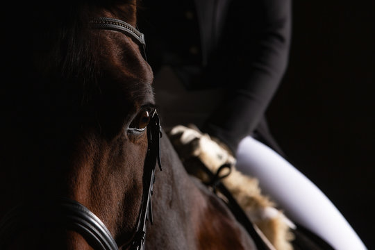 Dressage horse with rider in LowKey technique, close-up of the horse's head in the eye cutout, but you can still see a section of the rider in the focus. Right side still space for text..