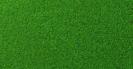 Photo sur Toile Culture Detailed green soccer field grass lawn texture from above, background texture