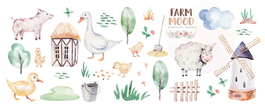 farms animal set mill. Cute domestic pets watercolor illustration. horse and goose. ranchp pig design with goat. rooster chicken and sheep, cow.
