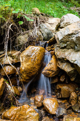 Small rivlet in the Austrian Mountains