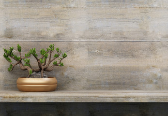 A bonsai tree on a wooden shelf. Copy space for inscriptions. 3D rendering.