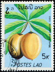 Acrylic Prints Chicken LAOS - CIRCA 1989: stamp 5 Laotian kip printed by Lao People's Democratic Republic, shows fruiting plant Mani Ikara Zapota, flora, circa 1989