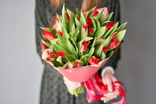 Red color tulips in woman hand. Young beautiful woman holding a spring bouquet. Bunch of fresh cut spring flowers in female hands