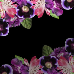 Fototapete - Beautiful floral background  of alstroemeria and gloxinia. Isolated
